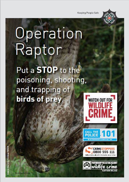 Operation Raptor Poster